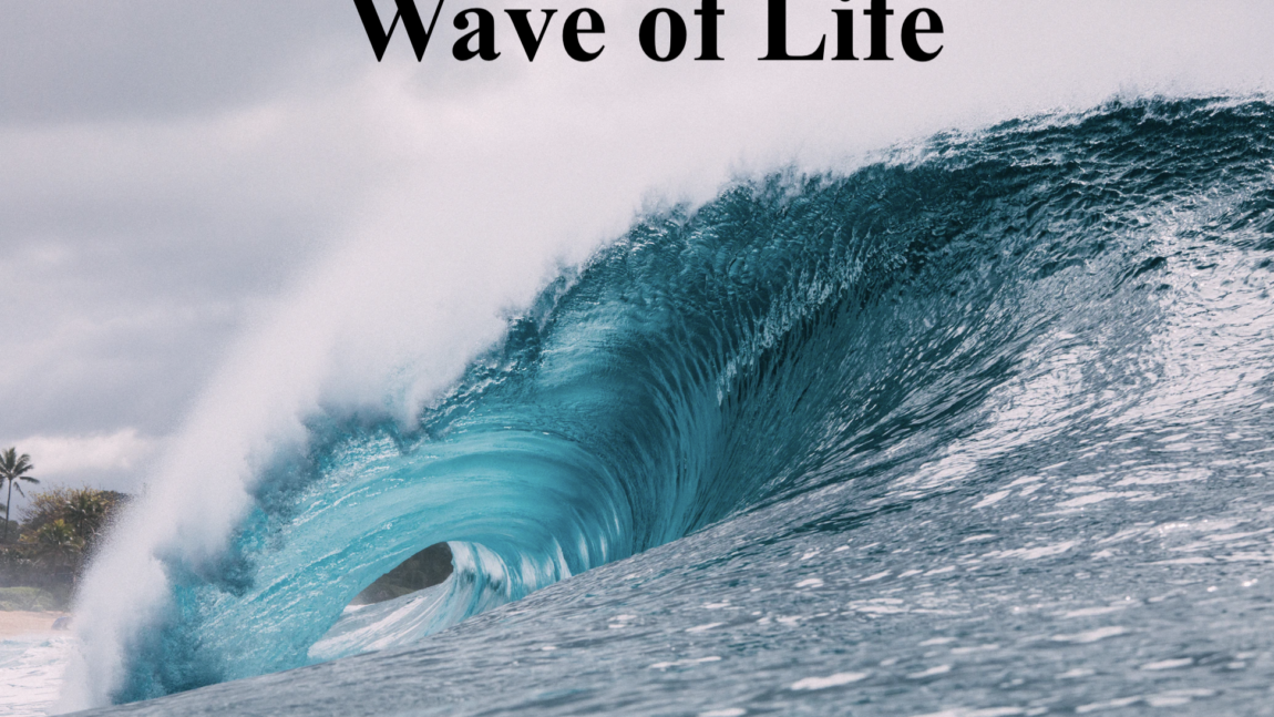 The Wave of Life
